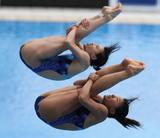 http://img256.imagevenue.com/loc364/th_42955_diving_world_champs_shanghai_2011_014_122_364lo.jpg